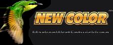 NEW COLOR® MarkenWertEntwicklung
